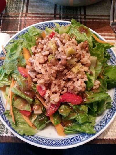 Salad with lentil rice salad