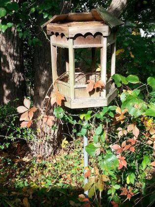 bird feeder no. 1